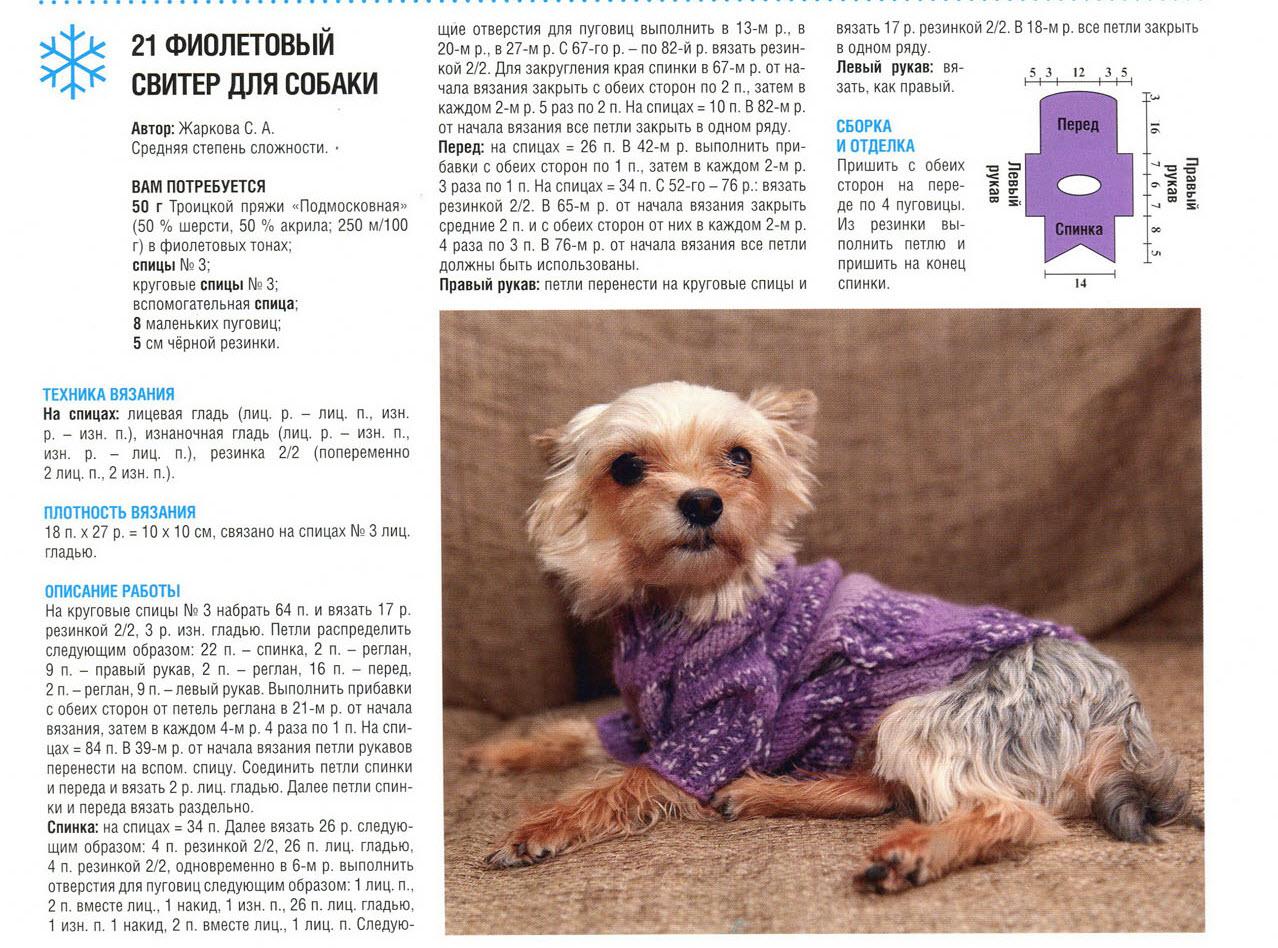 Одежда для собак связать спицами своими руками