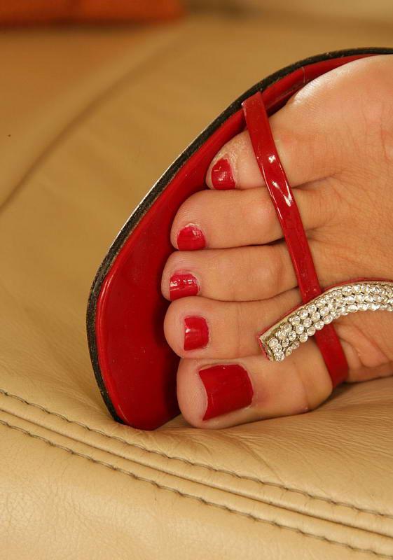 Сильвия саинт ножки фото 31165 фотография