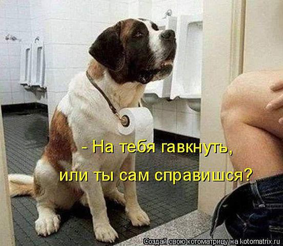 http://images.vfl.ru/ii/1343106525/87a327c2/755841_m.jpg