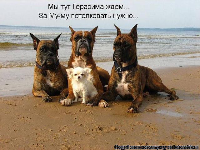 http://images.vfl.ru/ii/1343106536/8bfb21a1/755843_m.jpg