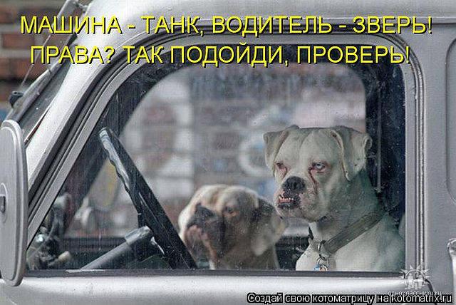 http://images.vfl.ru/ii/1343106555/f8756d23/755845_m.jpg