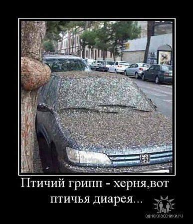 http://images.vfl.ru/ii/1343106575/36477632/755847_m.jpg