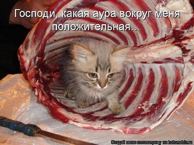 http://images.vfl.ru/ii/1343106594/710703df/755848_m.jpg