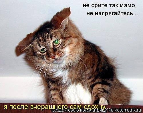 http://images.vfl.ru/ii/1343106665/d33c37ee/755852_m.jpg