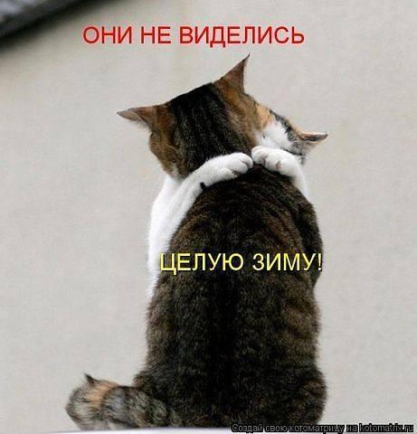 http://images.vfl.ru/ii/1343125713/129fffdd/756679_m.jpg