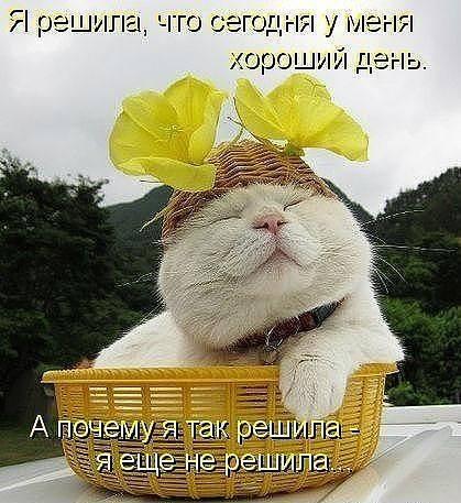 http://images.vfl.ru/ii/1343125725/93c6a056/756680_m.jpg