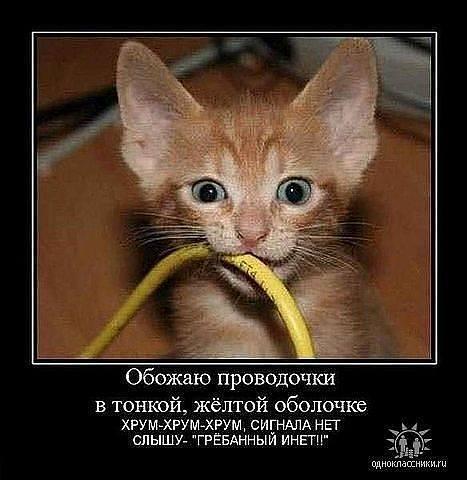http://images.vfl.ru/ii/1343125752/fd08e75f/756682_m.jpg