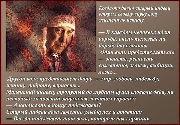 http://images.vfl.ru/ii/1361305808/5be107fc/1793218_m.jpg