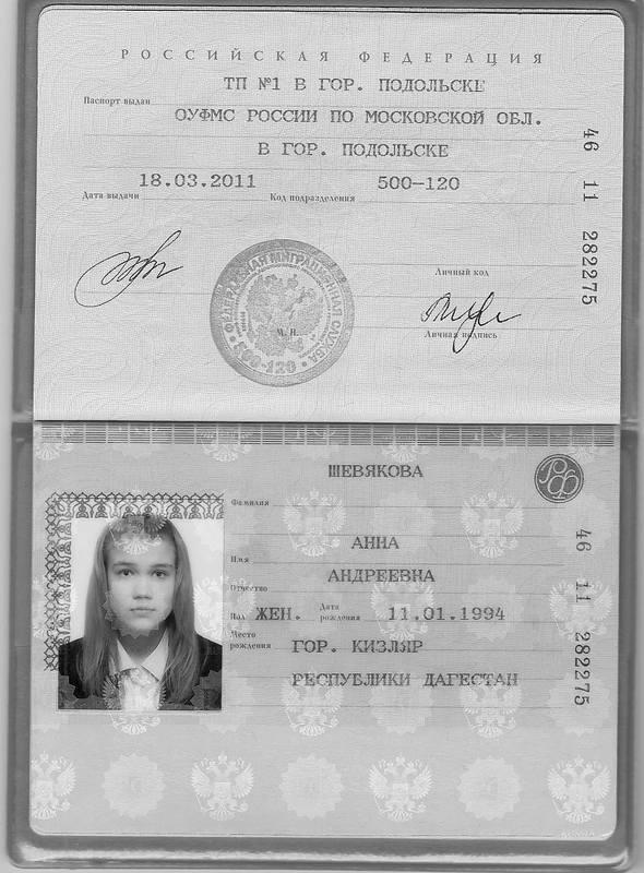 Картинки копии паспорта