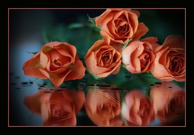http://images.vfl.ru/ii/1397622203/ac6b2489/4847449_m.jpg