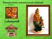 http://images.vfl.ru/ii/1402373457/f01291b7/5388928_s.jpg