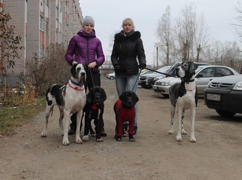 http://images.vfl.ru/ii/1415037606/0696e6d0/6835114_m.jpg
