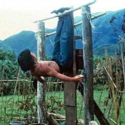Пьяный мастер (1978) 17200655