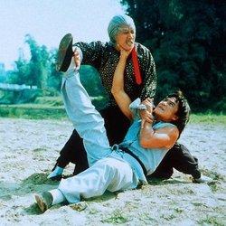 Бесстрашная гиена 2 (1983) 17271947