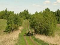 http://images.vfl.ru/ii/1495552009/b63b74d6/17326033_s.jpg