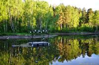 http://images.vfl.ru/ii/1500227992/d10f102f/17944370_s.jpg