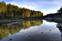 http://images.vfl.ru/ii/1500228074/41bfddb0/17944378_s.jpg