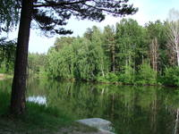 http://images.vfl.ru/ii/1500228183/a180826b/17944401_s.jpg