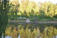 http://images.vfl.ru/ii/1500228511/5db5bb8c/17944479_s.jpg