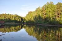 http://images.vfl.ru/ii/1500228514/8a73b87d/17944486_s.jpg