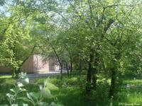 http://images.vfl.ru/ii/1500991876/a9689d9e/18030655_s.jpg
