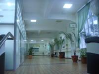 http://images.vfl.ru/ii/1501349636/1055f2fe/18073424_s.jpg