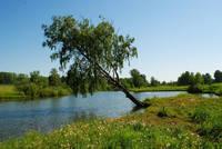 http://images.vfl.ru/ii/1503333858/ecb8670d/18324155_s.jpg