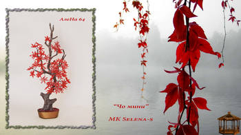 http://images.vfl.ru/ii/1504783273/aaf319e4/18512914_m.jpg