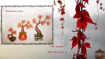 http://images.vfl.ru/ii/1504783274/96321e34/18512917_m.jpg