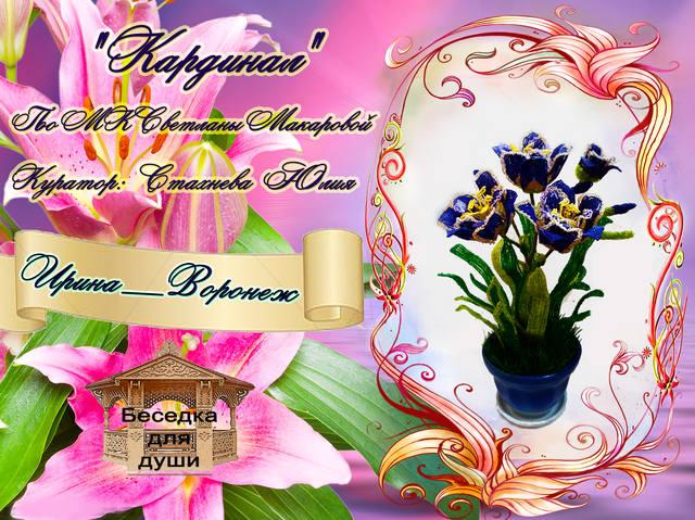 http://images.vfl.ru/ii/1505502719/c88e60fd/18617387_m.jpg