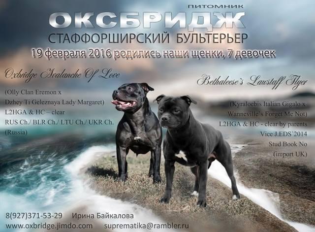 http://images.vfl.ru/ii/1510828990/d66545da/19444752_m.jpg