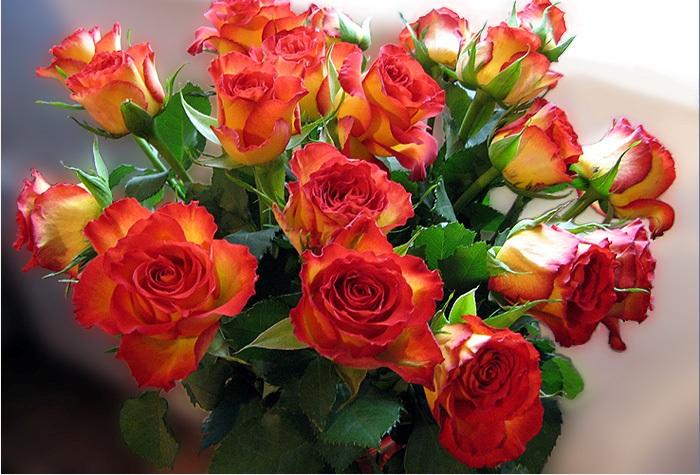 Открытка цветы розы для вас