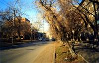 http://images.vfl.ru/ii/1519055564/d50f0efc/20651873_s.jpg