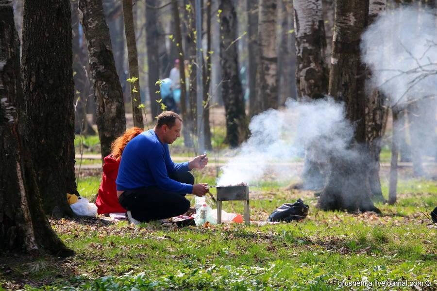 Первомайский шашлыкинг