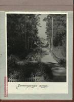 http://images.vfl.ru/ii/1528566286/8a5c5419/22056562_s.jpg