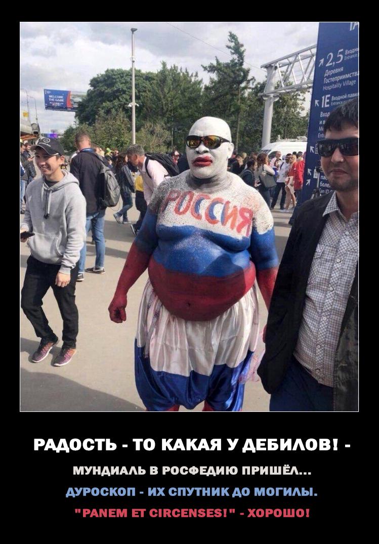 https://images.vfl.ru/ii/1529331583/a5d205c8/22160111.jpg
