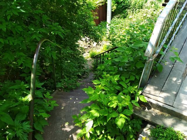 http://images.vfl.ru/ii/1529860778/a4554733/22234115_m.jpg