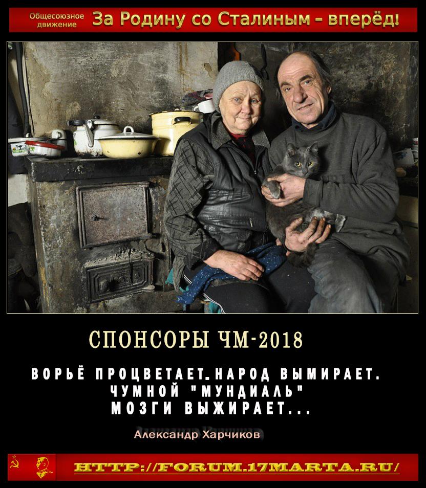 https://images.vfl.ru/ii/1531660031/514ae48b/22493731.jpg