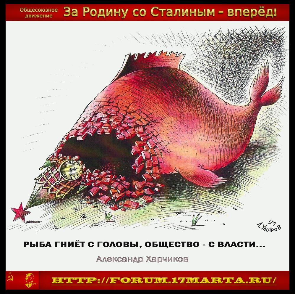 https://images.vfl.ru/ii/1531660866/937deb70/22493870.jpg