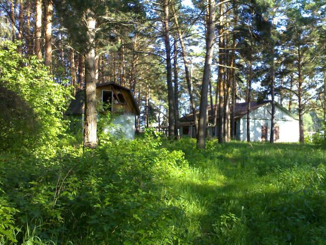 http://images.vfl.ru/ii/1533448410/2c4a72ce/22763471_m.jpg