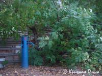 http://images.vfl.ru/ii/1535569020/def5d737/23111907_s.jpg