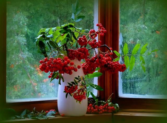 http://images.vfl.ru/ii/1535861369/f8e37fa4/23152821_m.jpg