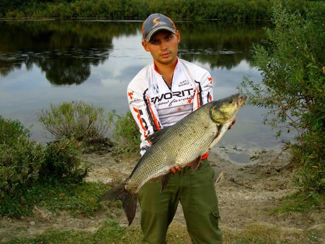 Рыбалка на реке сейму
