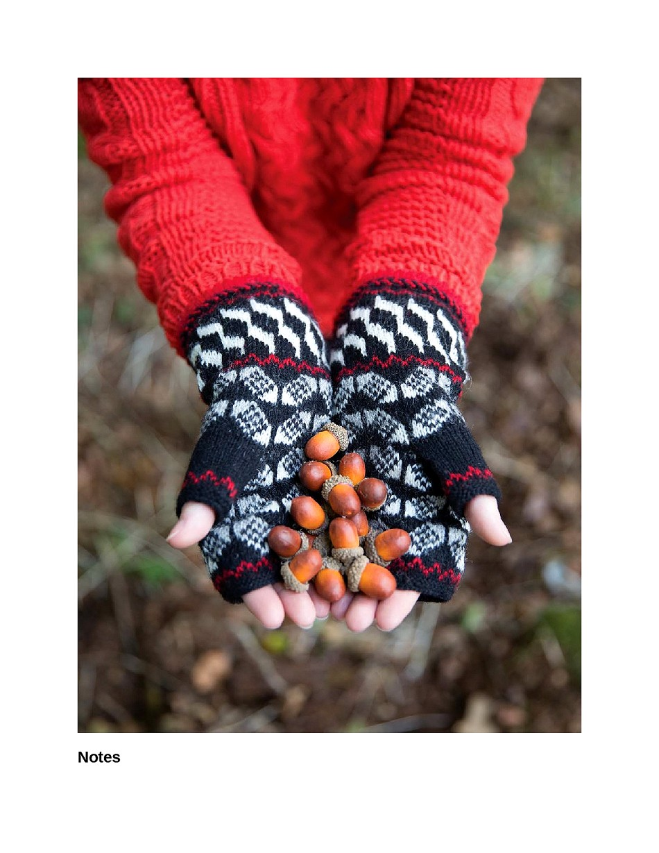 Knit Like a Latvian 50 Knitting Patterns for a Fresh Take on Traditional Latvian Mittens-092