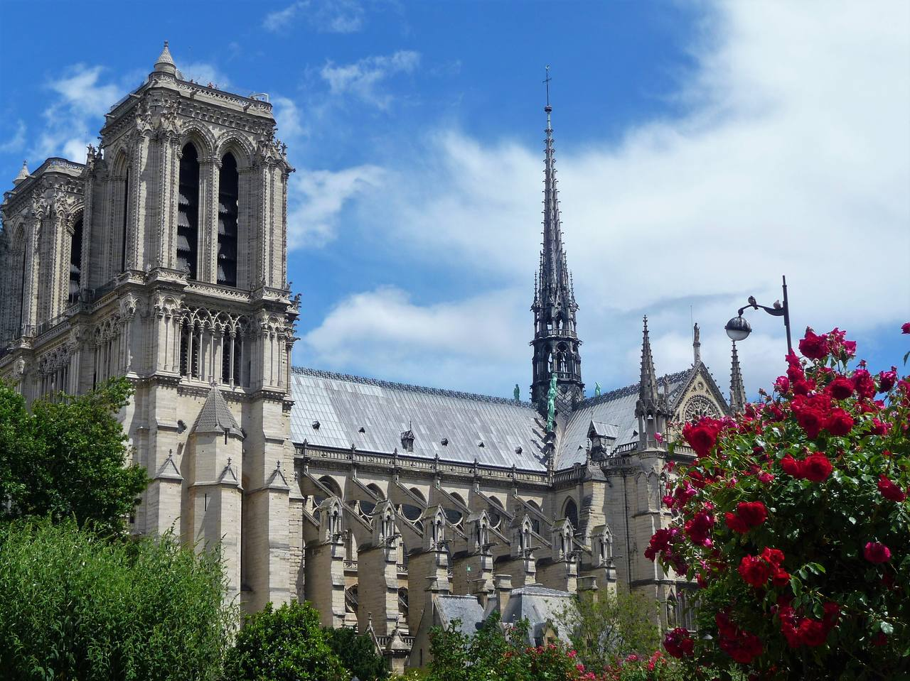 Notre Dame (29)