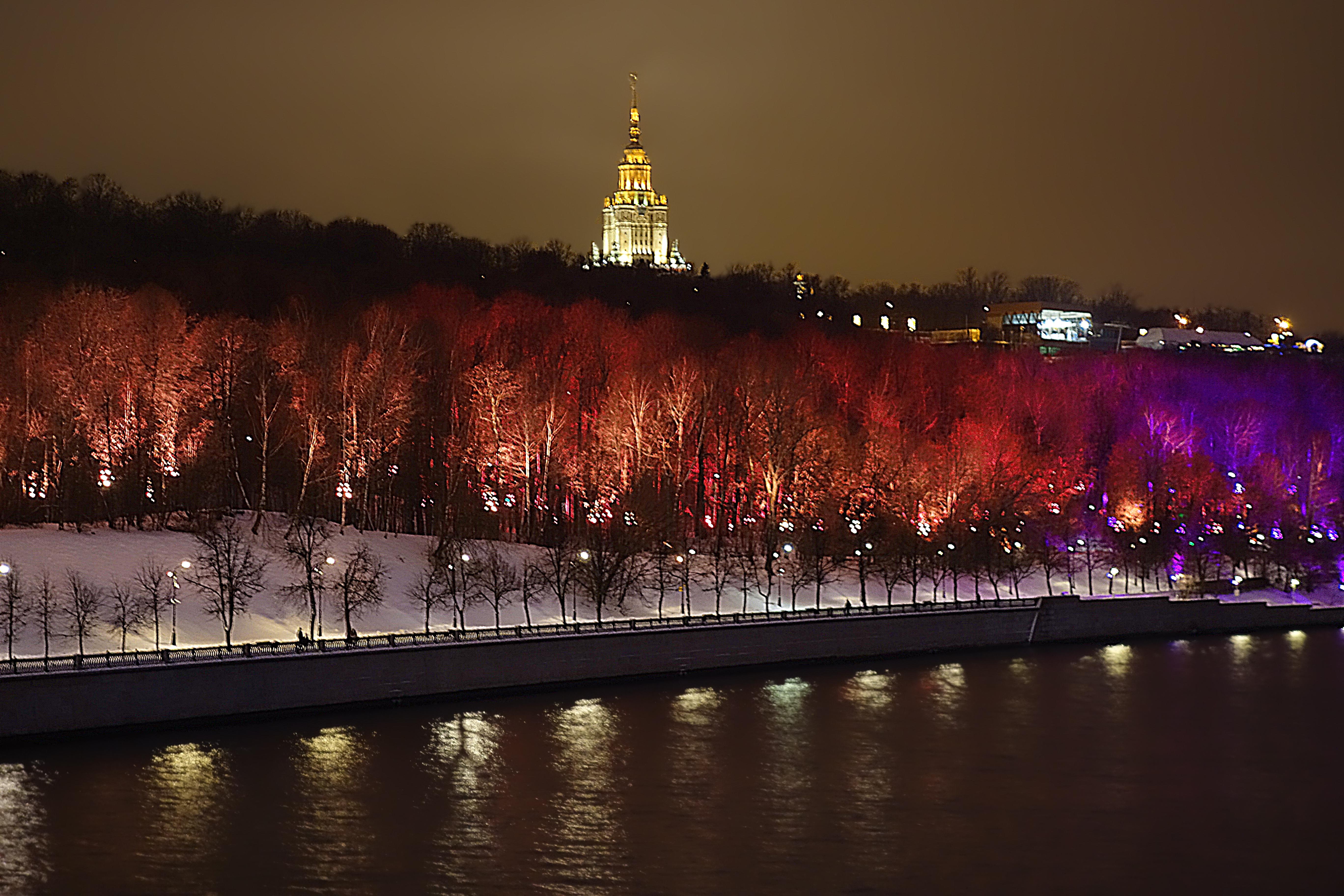 воробьевы горы фото зимой ночью нюхает носки