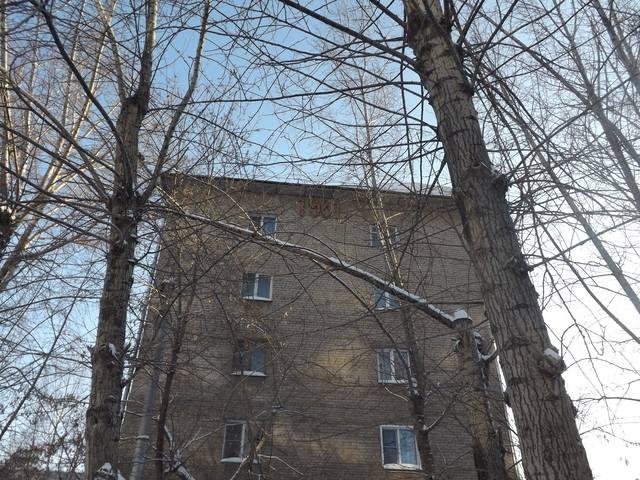 http://images.vfl.ru/ii/1547374197/e6c4b054/24933716_m.jpg