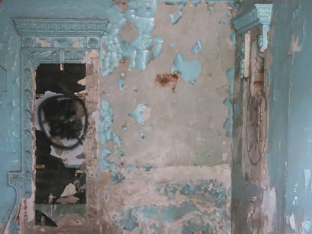 http://images.vfl.ru/ii/1549885955/d271b6dd/25347014_m.jpg