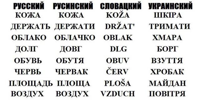 http://images.vfl.ru/ii/1550937025/6eb0155b/25515353_m.jpg