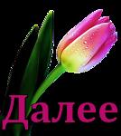 Весна-тюльпан1